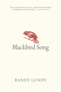 BLACKBIRD SONG cover AMAZON